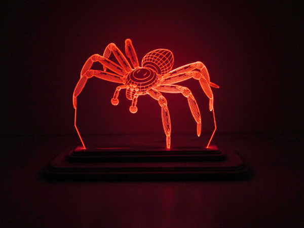 Mơ thấy nhện điềm dữ hay lành, đánh con gì đổi đời?