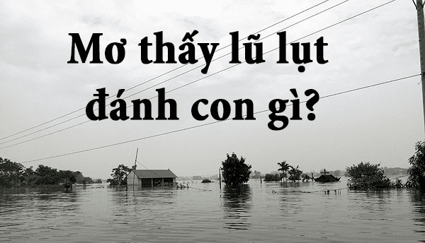 Mơ thấy lũ lụt điềm báo điều gì