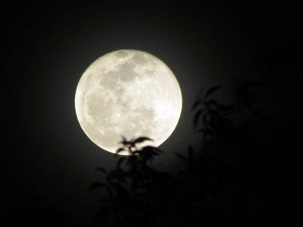 Nằm mơ thấy mặt trăng đánh xổ số con gì may mắn