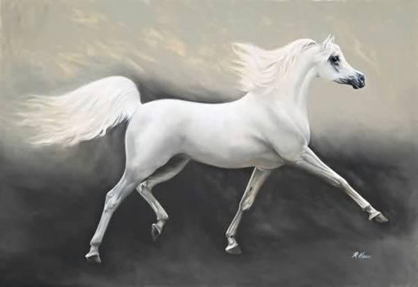 Giải mã giấc mơ thấy ngựa trắng là điềm báo gì nên đánh số mấy
